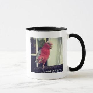 Tasse rose de perroquet