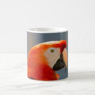 Tasse rouge de faune de nature d'oiseau de