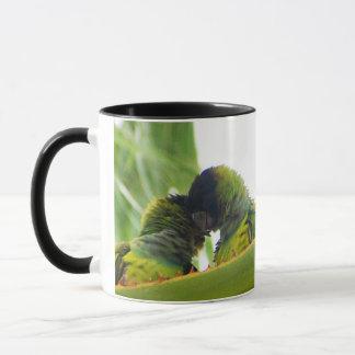 Tasse tôt tropicale d'oiseau