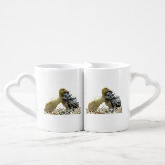 tasses de cuple