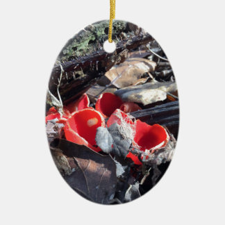 Tasses et feuille rouges ornement ovale en céramique