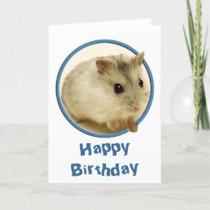 Hamster Verjaardag Cadeaus Zazzle Be