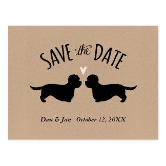 Terriers de Dandie Dinmont épousant des économies Carte Postale