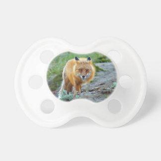 Tétine Art sauvage de photo de faune de renarde de Fox