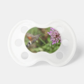 Tétine Faucon-mite de colibri (stellatarum de