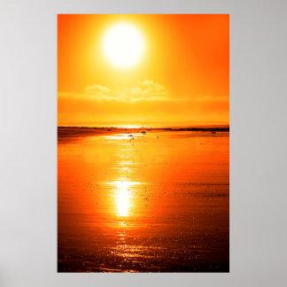 tige sur une plage de coucher du soleil