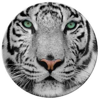 Tigre blanc assiettes en porcelaine
