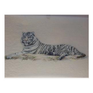 Tigre blanc dans le repos carte postale