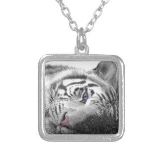 Tigre blanc pendentifs