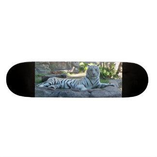 Tigre blanc skateboards customisés