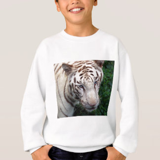 Tigre blanc sweatshirt