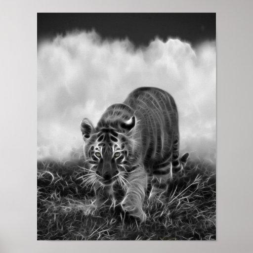 tigre de b b grappant en noir et blanc affiche zazzle. Black Bedroom Furniture Sets. Home Design Ideas