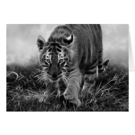 tigre de b b grappant en noir et blanc carte de v ux zazzle. Black Bedroom Furniture Sets. Home Design Ideas