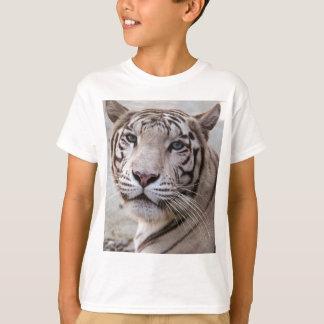 Tigre de Bengale blanc T-shirt