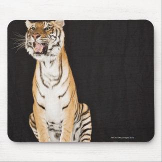Tigre hurlant tapis de souris