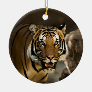 Tigre sibérien ornement rond en céramique