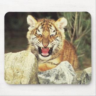 Tigre sibérien tapis de souris