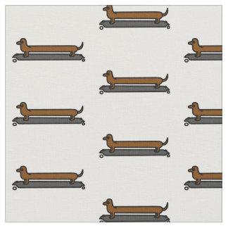 Tissu de chien de teckel de planche à roulettes