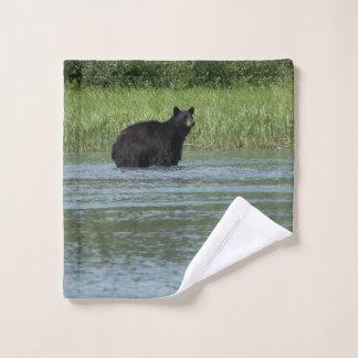 Tissu de lavage d'ours noir