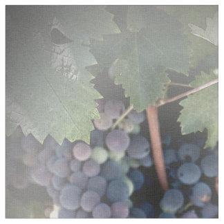 Tissu - raisins sur la vigne