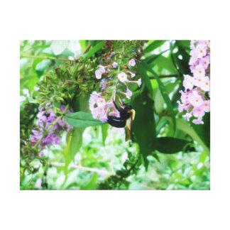 Toile Abeille de charpentier orientale sur la fleur de