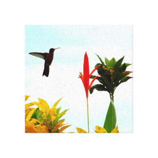 Toile Amour de colibri
