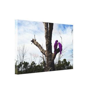Toile Aras pourpres se reposant dans un arbre,