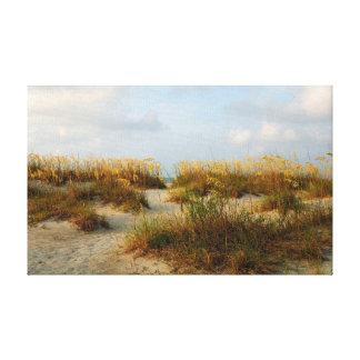 Toile avoine de mer sur la plage