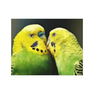 Toile Baisers de l'oiseau de perroquet de perruche
