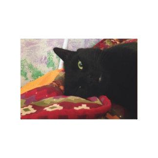 Toile Beau chat noir