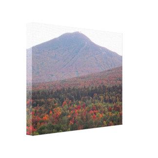 Toile Beau feuillage d'automne du Vermont