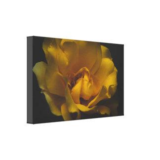 Toile Beau rose jaune