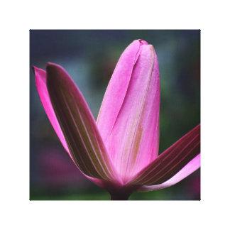 Toile belle fleur, forme peu commune, rouge foncé