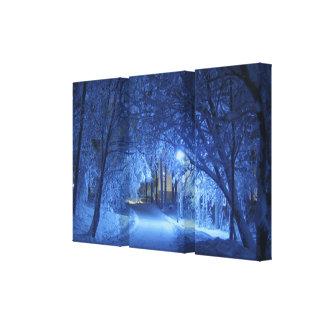 Toile Belles et sereines chutes de neige dans le bleu
