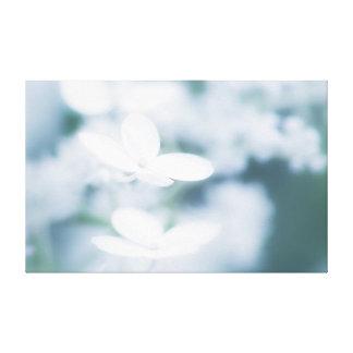 Toile Belles fleurs blanches