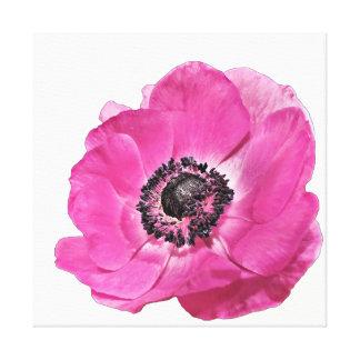 Toile Blanc floral de beau pavot rose lumineux vibrant