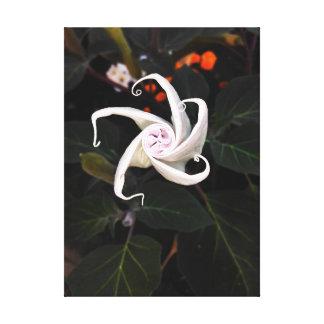 Toile Bourgeon floral de datura