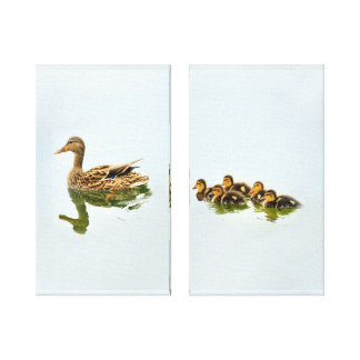 Toile Canards