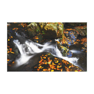 Toile Cascade en automne