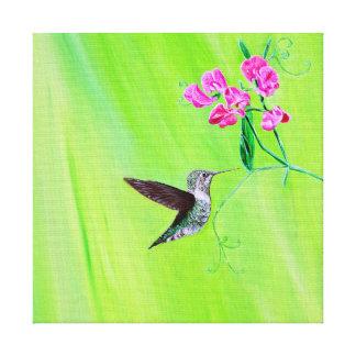 Toile Colibri et pois doux