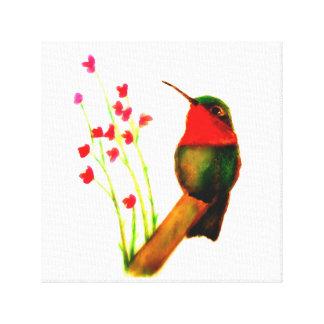 Toile Colibri Rubis-Throated