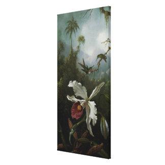 Toile Colibris et orchidée blanche par Martin J. Heade
