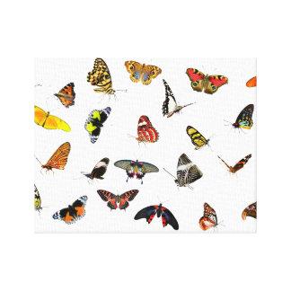 Toile Collage de collection de papillon