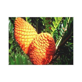 Toile Cônes africains oranges de pignon,