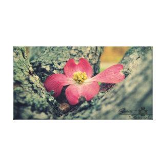 Toile Cornouiller rose