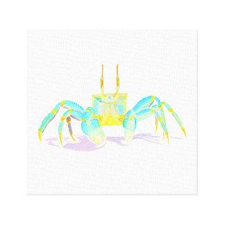 Toile crab_6500_shirts