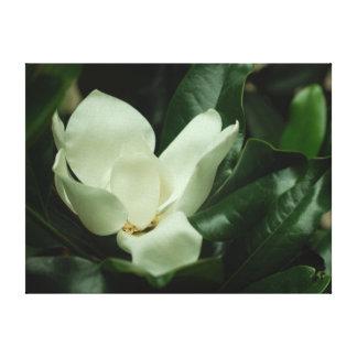 Toile Dark Magnolia