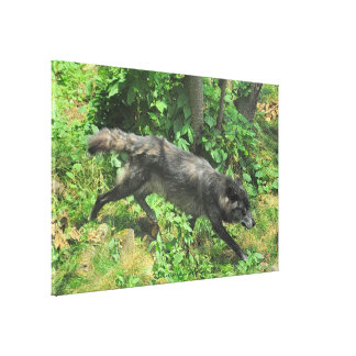 Toile d'art de faune de loup gris d'été