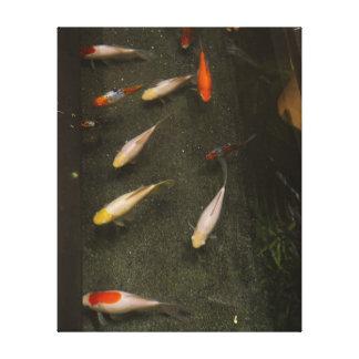 Toile de Nishikigoi (poisson de Koi)