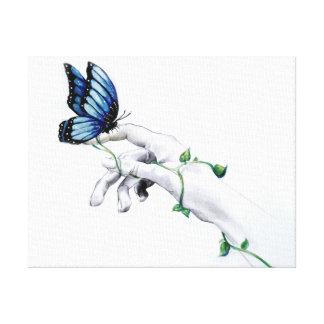 Toile de papillon en main